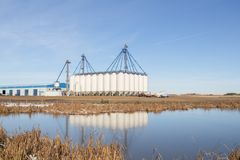 Grain silos. Tall white grain silos reflecting in a pond royalty free stock photo