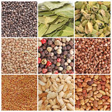 Grain and spices Royalty Free Stock Image