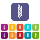 Grain spike icons set flat Stock Image