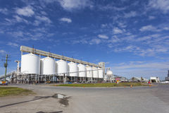 Grain storage tanks Royalty Free Stock Photo