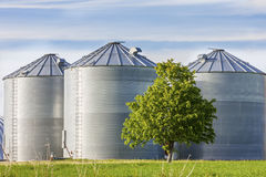 Grain Tanks Stock Photo