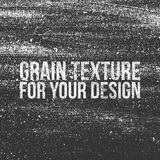 Grain Texture for Your Design Royalty Free Stock Photography