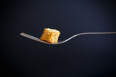 Grain toast with a fork Royalty Free Stock Photography