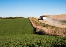 Grain truck Stock Image