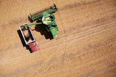 Grain Truck and Harvester Royalty Free Stock Image