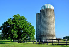 Grain Twin Tower Silo on Country Farmland. Two silos for storing grain sitting by wooden fence on farmland with large tree, green grass, and bright blue sky Stock Photography