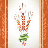 Grain vector symbol Stock Image