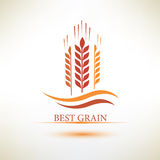 Grain vector symbol Stock Photos