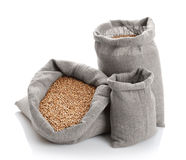 Grain of the wheat in bags stock photography