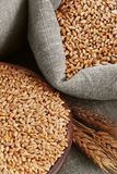 Grain of the wheat in bags and a bowl stock photo