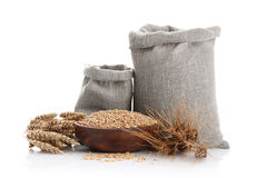 Grain of the wheat in bags and a bowl Stock Image