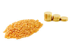 Grain of wheat and metal coins Royalty Free Stock Photo