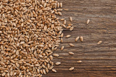 The grain of wheat on a wooden surface Royalty Free Stock Image