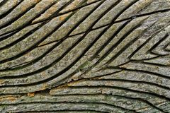 The grain in the wood. A background scene with the grain in the wood royalty free stock photo