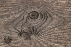 Grain of wood. In a plank with three knotholes stock photos