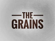 The grain word on grain background vector illustration