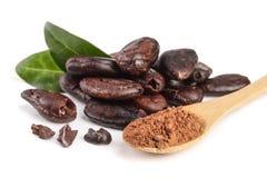 Graine de cacao épluchée avec la poudre de feuille et de cacao dans la cuillère en bois d'isolement sur le fond blanc Image libre de droits