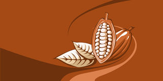 Graine de cacao avec le fond de chocolat Photo stock