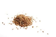 Graine de lin Image libre de droits