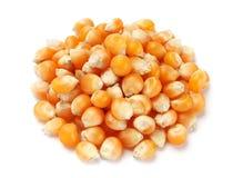 Graine de maïs éclaté image stock