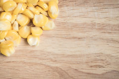 Graine de maïs Image libre de droits