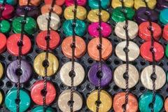 Graine de noix de coco Photographie stock libre de droits