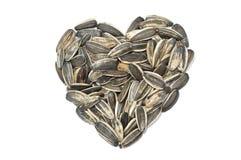 Graine de tournesol dans la forme de coeur Images stock