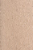 Grained beige background Royalty Free Stock Photo