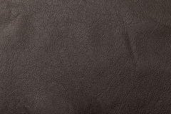 Grained leather texture Stock Image