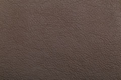 Grained leather texture Stock Photos