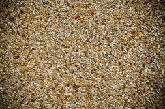 Grained rock. Flooring made of stone endways nicely Royalty Free Stock Photography