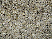 Grained wall. Tiny grains. Small grains. Granulated wall royalty free stock images