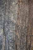 Grained wood Stock Photo