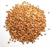 Graines Photographie stock libre de droits