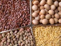 Graines Image stock