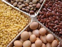 Graines Photographie stock