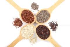 Graines blanches rouges noires de quinoa et de chia dans la cuillère en bois d'isolement sur le fond blanc Vue supérieure Image libre de droits