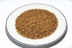 Graines de blé Photos stock