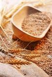 Graines de blé sur le matériau approximatif Photographie stock libre de droits