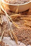 Graines de blé sur le matériau approximatif Images libres de droits