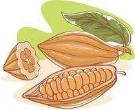 Graines de cacao illustration de vecteur