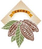 Graines de cacao Images stock