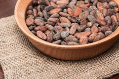 Graines de cacao photo libre de droits
