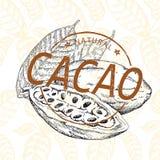 Graines de cacao avec le timbre Images libres de droits