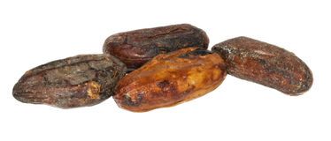 Graines de cacao crues Photo stock