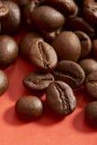 Graines de café Image stock