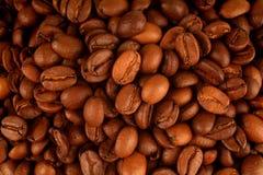 Graines de café Image libre de droits