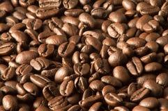 Graines de café Images libres de droits