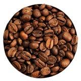 Graines de café d'isolement Image stock