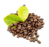 Graines de café et feuilles photo libre de droits